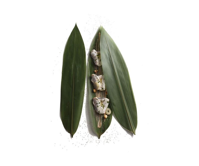 Bambú y kokotxas (Elena Arzak)