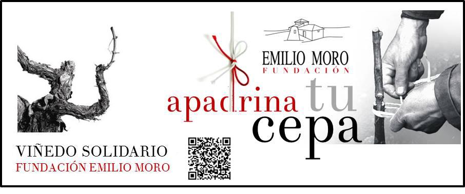 Apadrina tu Cepa, Fundación Emilio Moro
